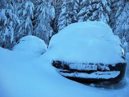 snow.2