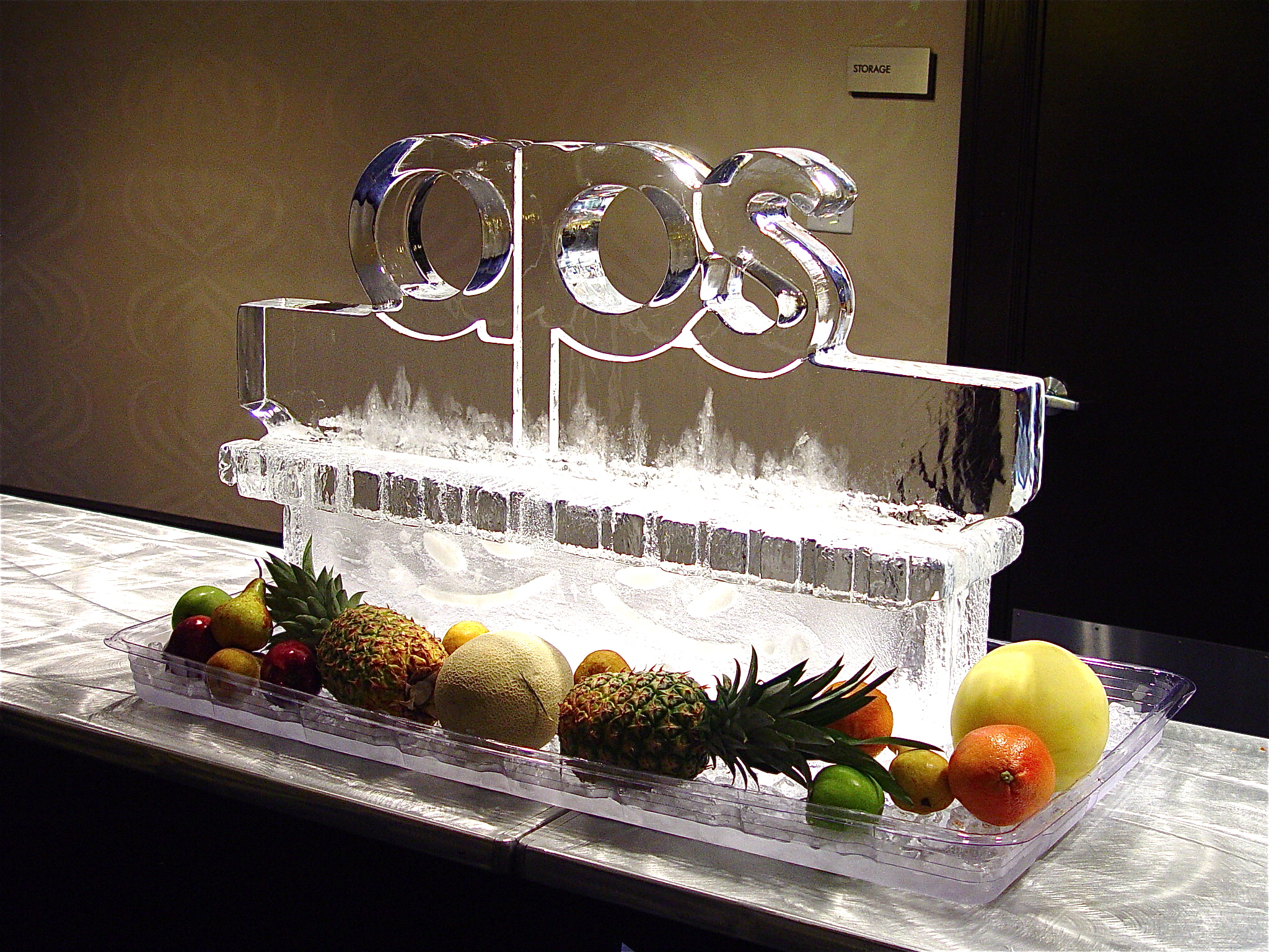 APS_icescuplture_2011