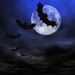 picture of bats and moon; used for halloween pr