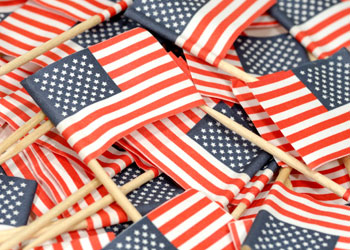 This is a photo of small american flags.