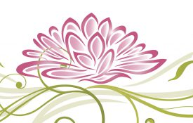 Colorful, abstract and filigree lotus in pink and green