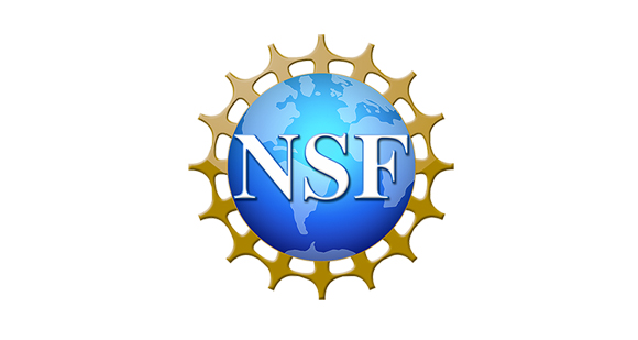 This is the NSF logo.