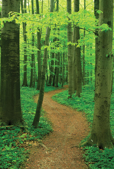 path_use