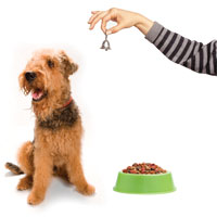 This is a photo of a dog, dog food, and a person ringing a bell.