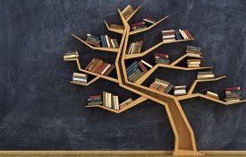 Bookshelf full of books in form of tree