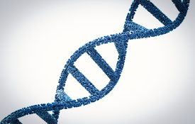 3D DNA helix