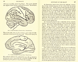 Principles_of_Psyhcology_pages