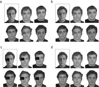 Examples of lineup types. A suspect's distinctive feature can be (a) replicated or concealed either (b) by pixelation or (c) with a block. These are considered fair lineups. Doing nothing about the distinctive feature (d; a do-nothing lineup) constitutes an unfair lineup. The boxed image in each lineup indicates the suspect with the distinctive facial feature.
