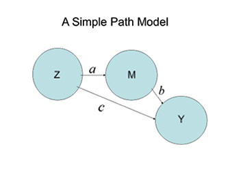 This is a figure of a simple path model.