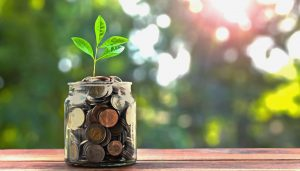 This is a photo of a jar of coins with a plant sprouting out of it