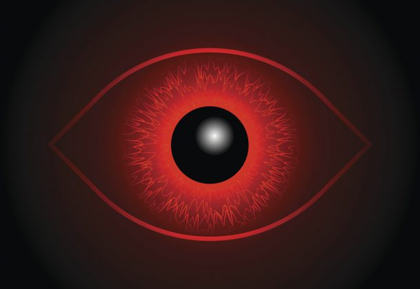 Blood Vessels in the Eye Linked With IQ, Cognitive Function