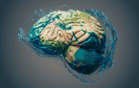 Brain Researchers Announce Plan to Create International Brain Initiative