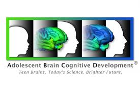 NIH Releases Adolescent Brain Development Data to Scientists
