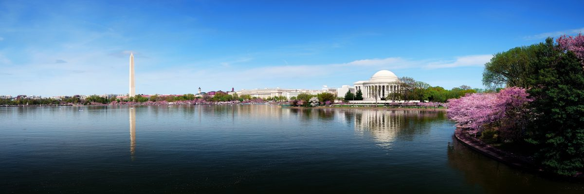 Washignton DC, photo of Tidal Basin and Jefferson Memorial
