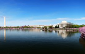 Washington DC, photo of Tidal Basin and Jefferson Memorial