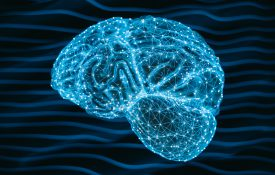 3d human brain with neural connections on abstract background.