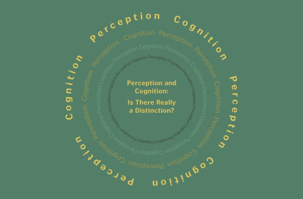 Cognition and Perception: Is There Really a Distinction?