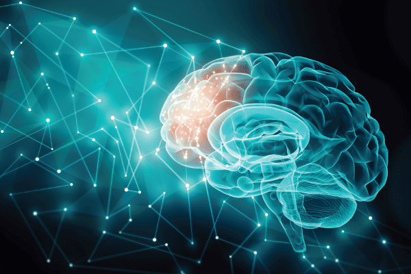 The Brain from Inside Out: 2020 Kavli Keynote Address Shines Light on Cognition